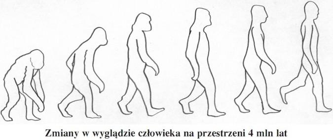 Zmiany w wyglądzie człowieka na przestrzeni 4 mln lat