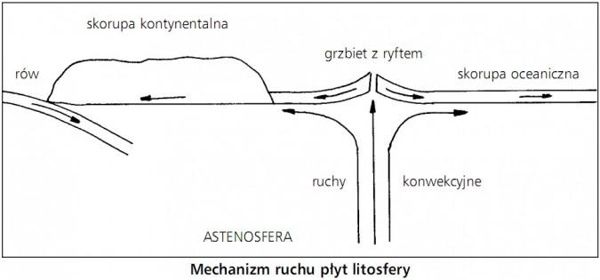 Mechanizm ruchu płyt litosfery. Rów, skorupa kontynentalna, grzbiet z ryftem, skorupa oceaniczna, ruchy konwekcyjne, astenosfera.