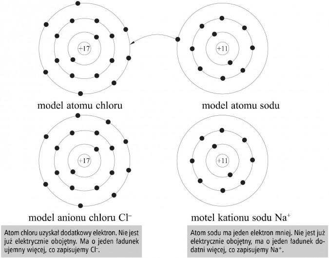 Model atomu chloru, model atomu sodu, model anionu chloru Cl-, model kationu sodu Na+. Atom chloru uzyskał dodatkowy elektron. Nie jest już elektrycznie obojętny. Ma o jeden ładunek ujemny więcej, co zapisujemy Cl-. Atom sodu ma jeden elektron mniej. Nie jest już elektrycznie obojętny, ma o jeden ładunek dodatni więcej, co zapisujemy Na+.